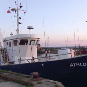 athlonII